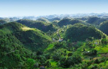 Jamaica-Blue-Mountains-