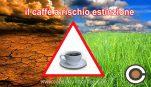 Caffè a rischio estinzione: nel 2050 sarà un lusso?