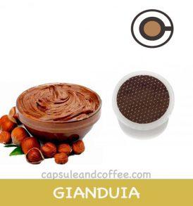 capsule-compatibili-point-caffe-GIANDUIA